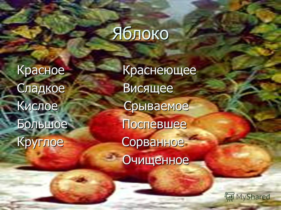 Яблоко Красное Краснеющее Сладкое Висящее Кислое Срываемое Большое Поспевшее Круглое Сорванное Очищенное Очищенное