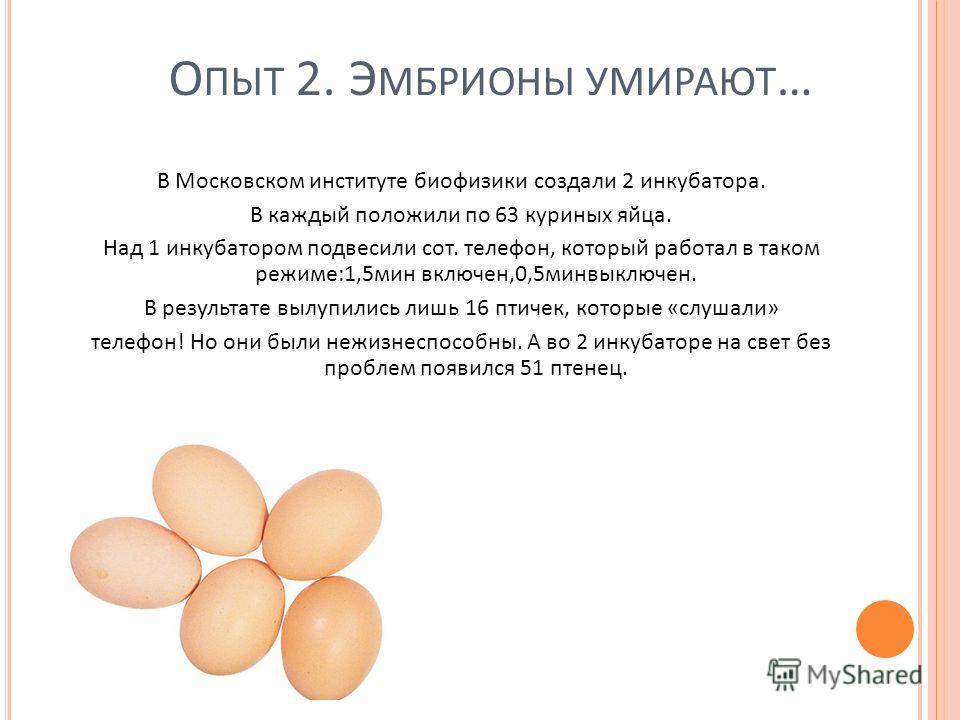 О ПЫТ 2. Э МБРИОНЫ УМИРАЮТ … В Московском институте биофизики создали 2 инкубатора. В каждый положили по 63 куриных яйца. Над 1 инкубатором подвесили сот. телефон, который работал в таком режиме:1,5мин включен,0,5минвыключен. В результате вылупились