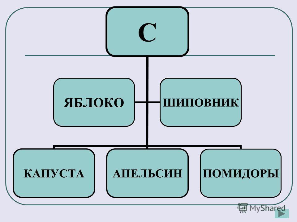 С КАПУСТААПЕЛЬСИНПОМИДОРЫ ЯБЛОКОШИПОВНИК