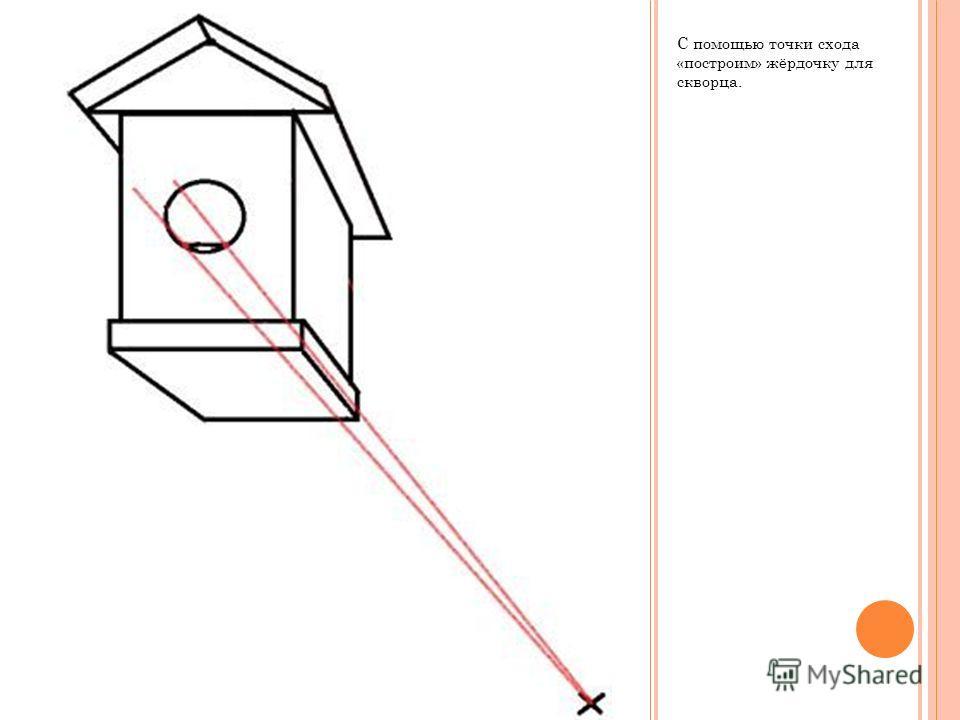 С помощью точки схода «построим» жёрдочку для скворца.