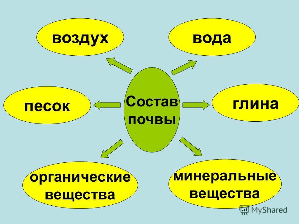 Опыт 4-5. Вывод: В почве есть органические и минеральные вещества.
