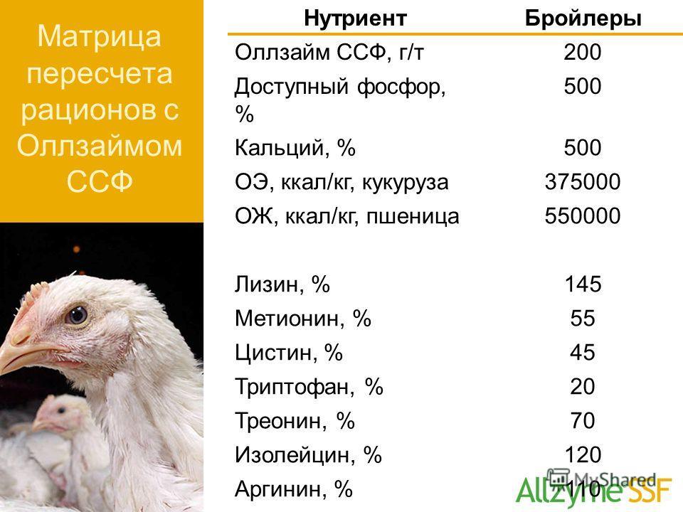 НутриентБройлеры Оллзайм ССФ, г/т200 Доступный фосфор, % 500 Кальций, %500 ОЭ, ккал/кг, кукуруза375000 ОЖ, ккал/кг, пшеница550000 Лизин, %145 Метионин, %55 Цистин, %45 Триптофан, %20 Треонин, %70 Изолейцин, %120 Аргинин, %110 Матрица пересчета рацион