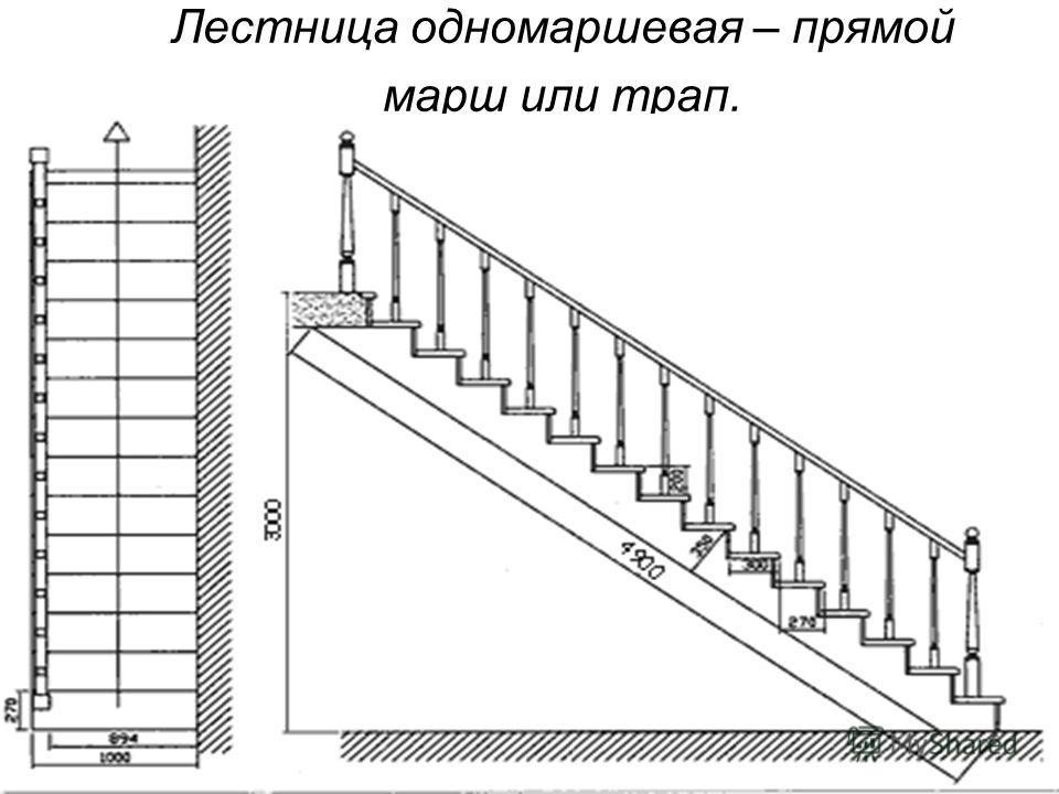 Лестница одномаршевая – прямой марш или трап.