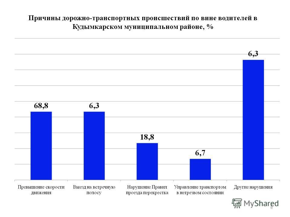 8 Причины дорожно-транспортных происшествий по вине водителей в Кудымкарском муниципальном районе, %