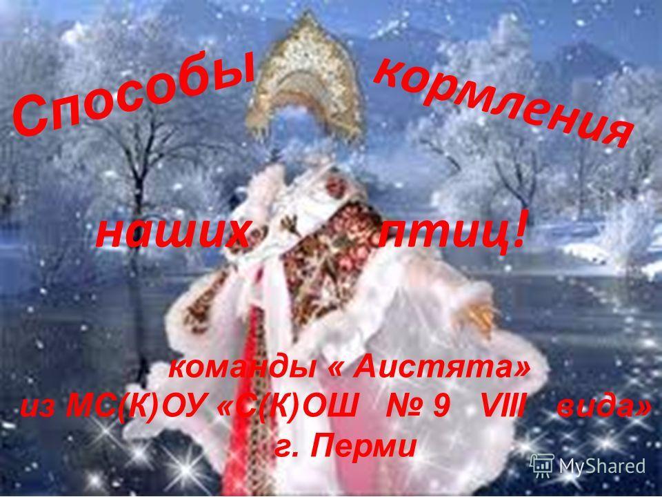 Способы кормления команды « Аистята» из МС(К)ОУ «С(К)ОШ 9 VIII вида» г. Перми наших птиц!