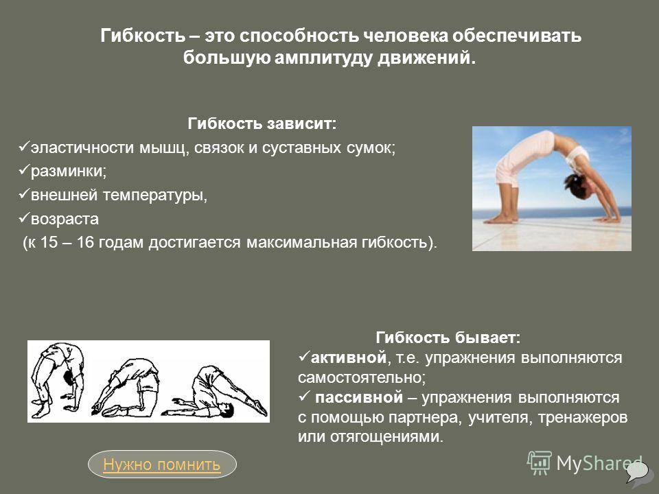 Гибкость – это способность человека обеспечивать большую амплитуду движений. Гибкость зависит: эластичности мышц, связок и суставных сумок; разминки; внешней температуры, возраста (к 15 – 16 годам достигается максимальная гибкость). Нужно помнить Гиб