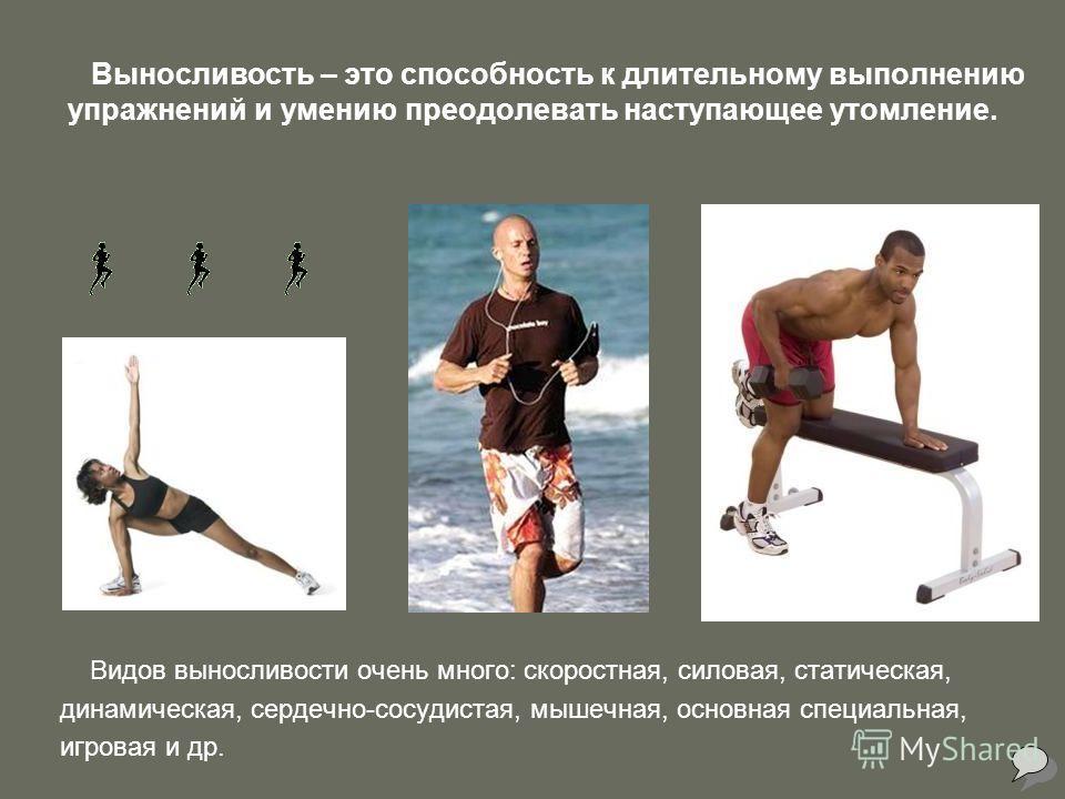 Выносливость – это способность к длительному выполнению упражнений и умению преодолевать наступающее утомление. Видов выносливости очень много: скоростная, силовая, статическая, динамическая, сердечно-сосудистая, мышечная, основная специальная, игров