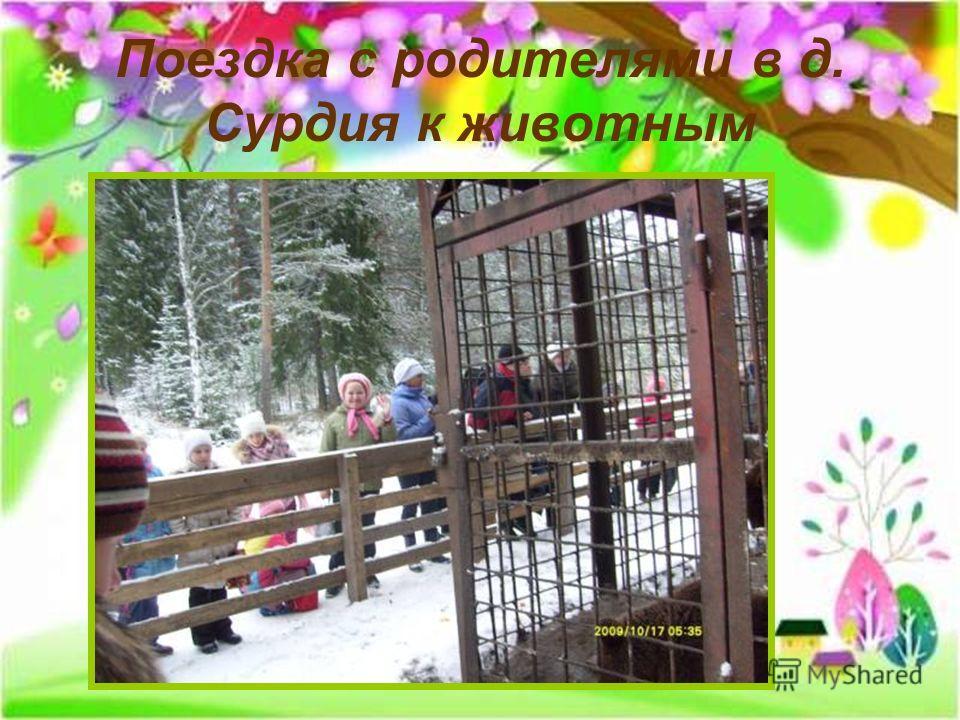 Поездка с родителями в д. Сурдия к животным