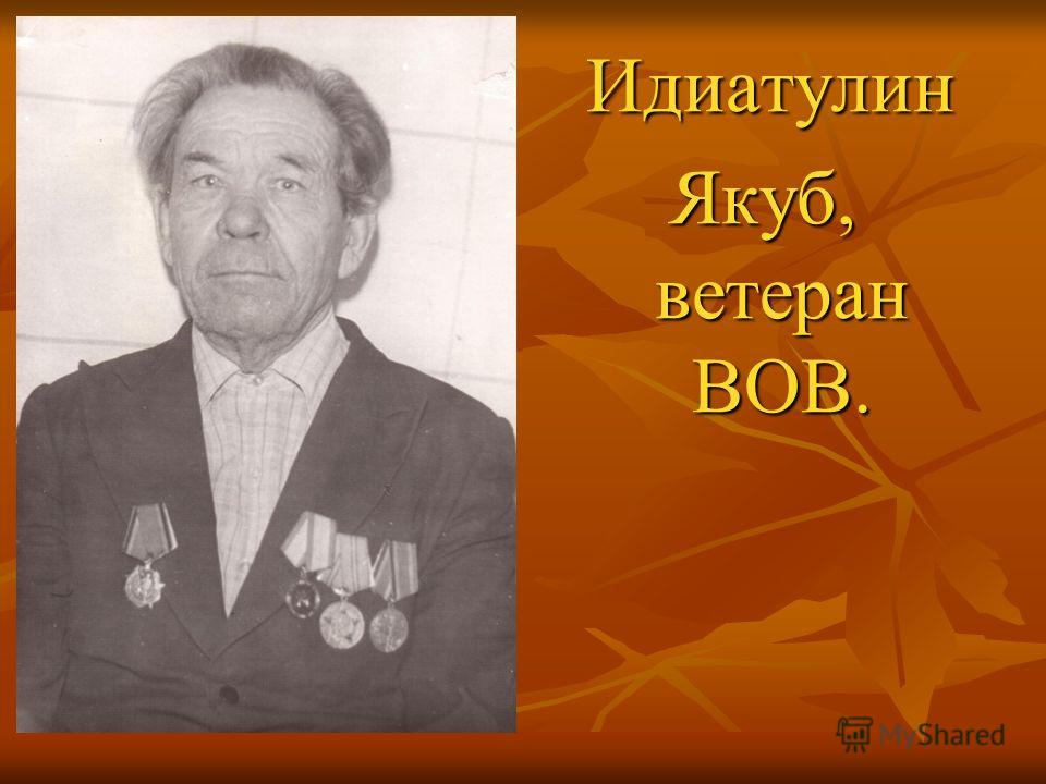 Идиатулин Идиатулин Якуб, ветеран ВОВ.