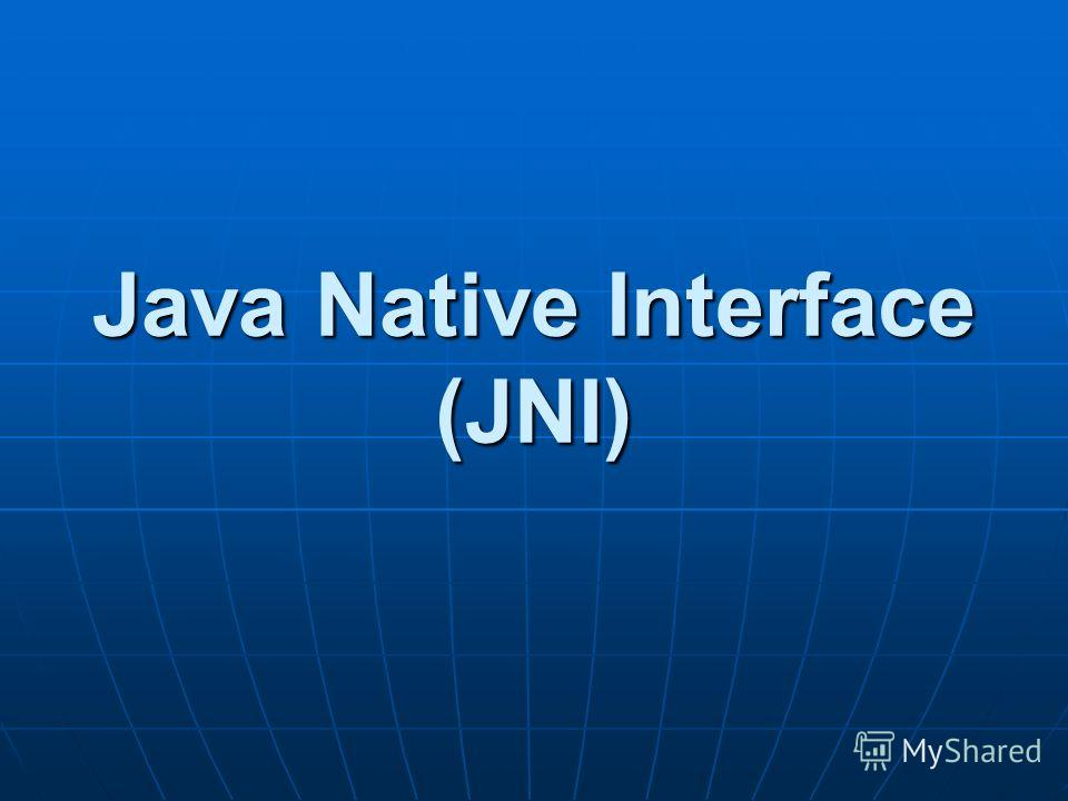 Java Native Interface (JNI)