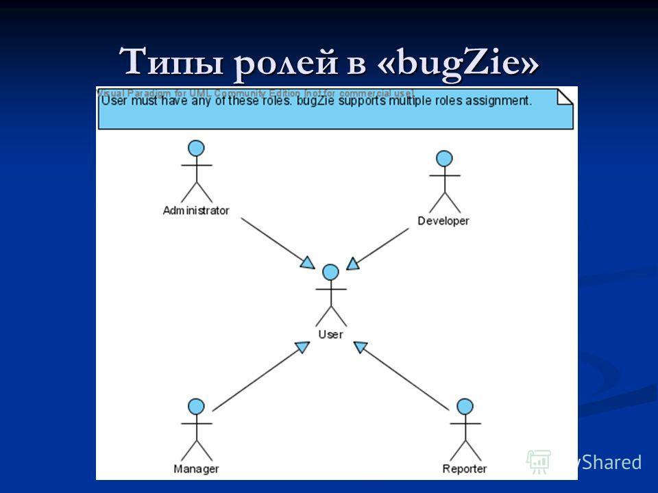 Типы ролей в «bugZie»
