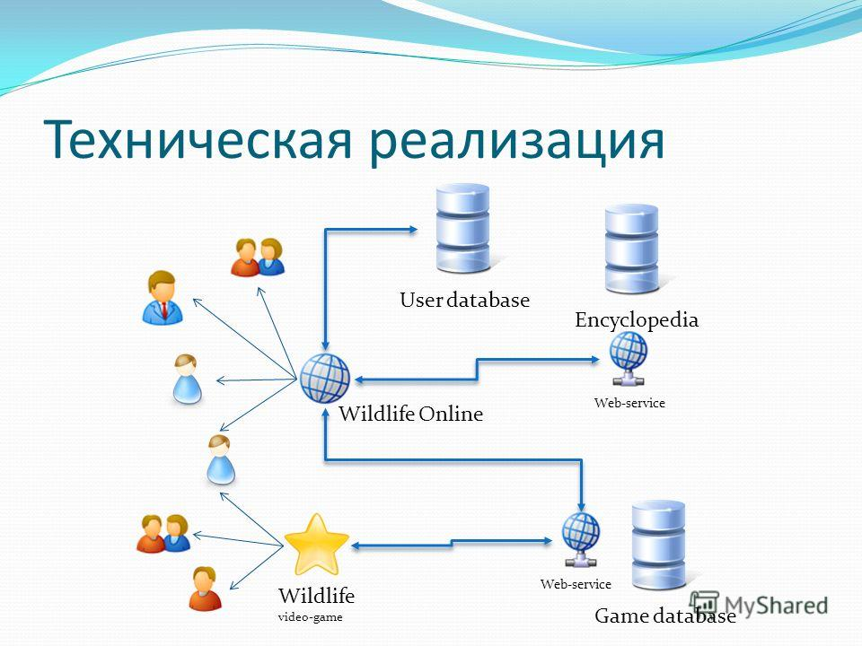 Техническая реализация EncyclopediaUser databaseGame database Wildlife video-game Web-service Wildlife Online