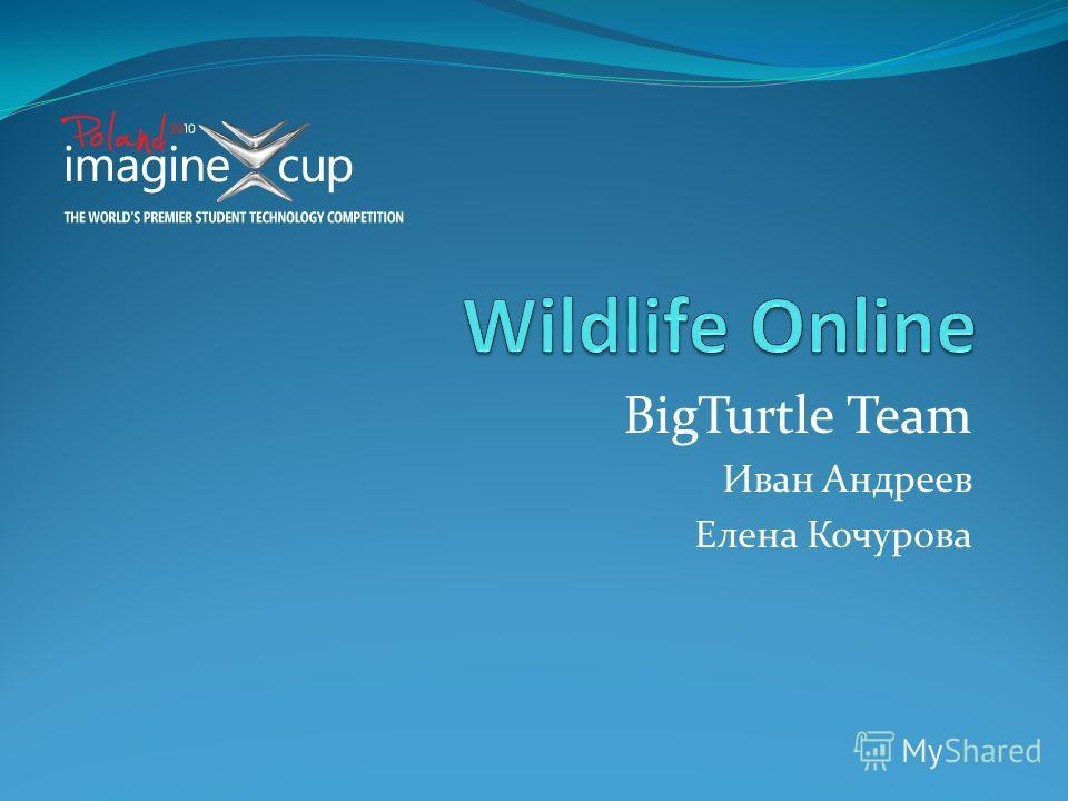 BigTurtle Team Иван Андреев Елена Кочурова