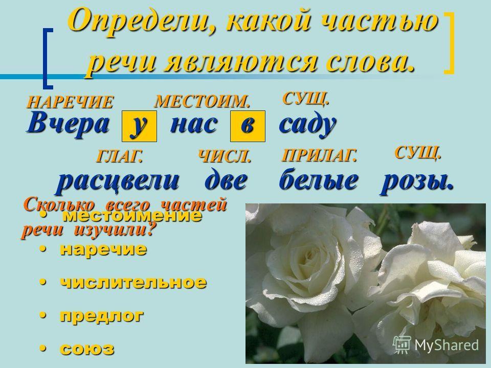 Определи, какой частью речи являются слова. Вчера у нас в саду расцвели две белые розы. расцвели две белые розы. СУЩ. СУЩ. ГЛАГ. ПРИЛАГ. Сколько всего частей речи изучили? местоимение местоимение наречие наречие числительное числительное предлог пред