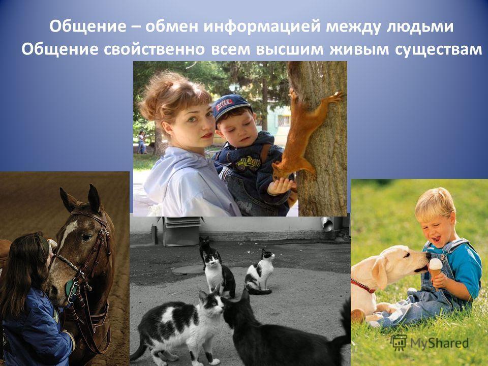 Общение – обмен информацией между людьми Общение свойственно всем высшим живым существам