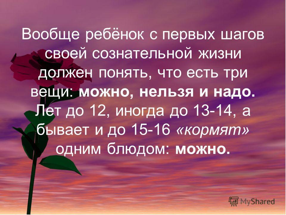 Вообще ребёнок с первых шагов своей сознательной жизни должен понять, что есть три вещи: можно, нельзя и надо. Лет до 12, иногда до 13-14, а бывает и до 15-16 «кормят» одним блюдом: можно.