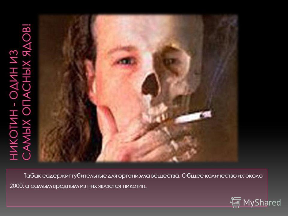Табак содержит губительные для организма вещества. Общее количество их около 2000, а самым вредным из них является никотин.