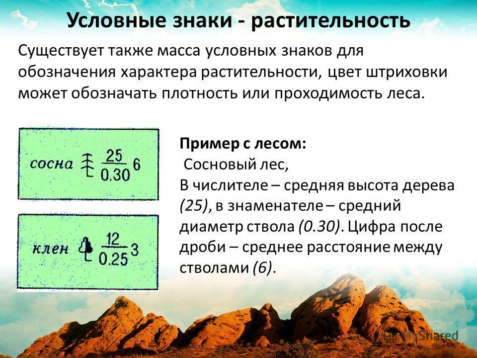 Условные знаки - растительность Пример с лесом: Сосновый лес, В числителе – средняя высота дерева (25), в знаменателе – средний диаметр ствола (0.30). Цифра после дроби – среднее расстояние между стволами (6). Существует также масса условных знаков д