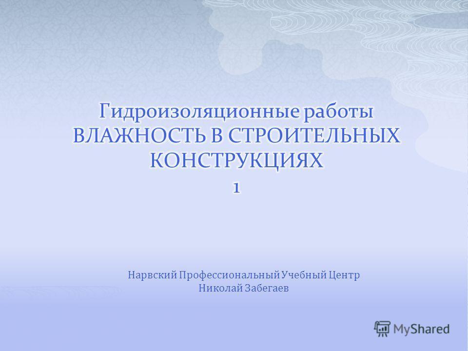 Нарвский Профессиональный Учебный Центр Николай Забегаев