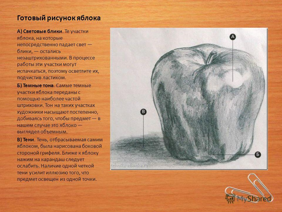 Готовый рисунок яблока А) Световые блики. Те участки яблока, на которые непосредственно падает свет блики, остались незаштрихованными. В процессе работы эти участки могут испачкаться, поэтому осветлите их, подчистив ластиком. Б) Темные тона. Самые те