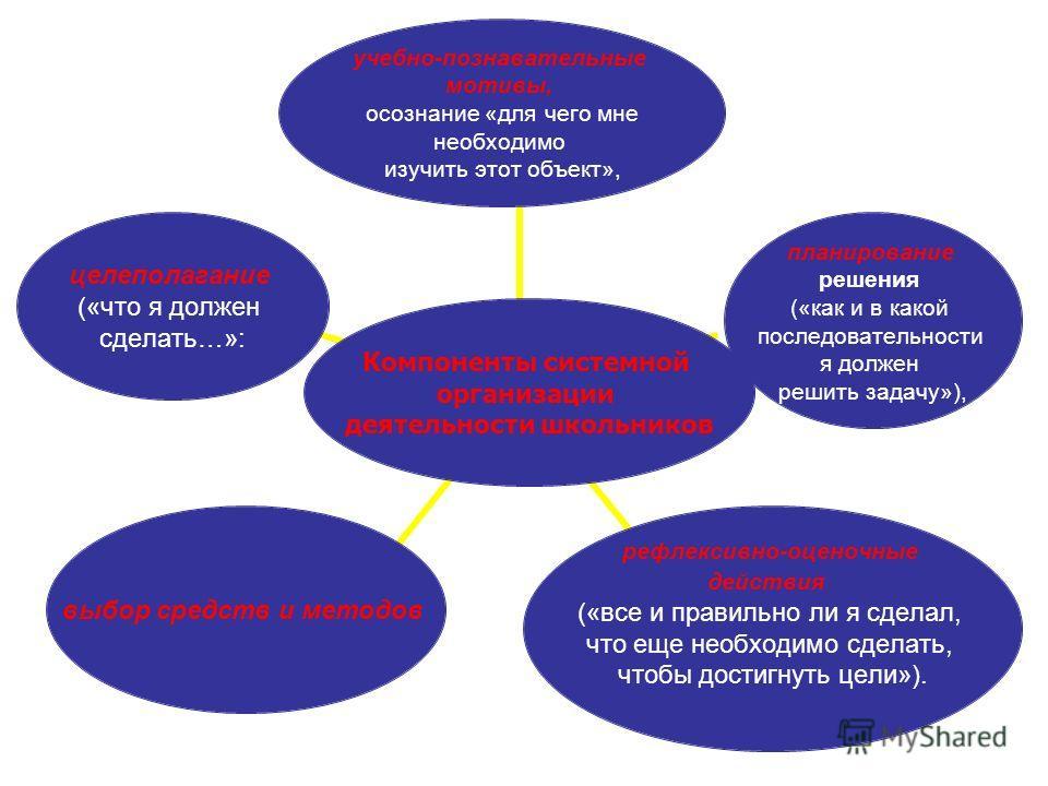 Компоненты системной организации деятельности школьников учебно- познавательные мотивы, осознание «для чего мне необходимо изучить этот объект», планирование решения («как и в какой последовательности я должен решить задачу»), рефлексивно- оценочные