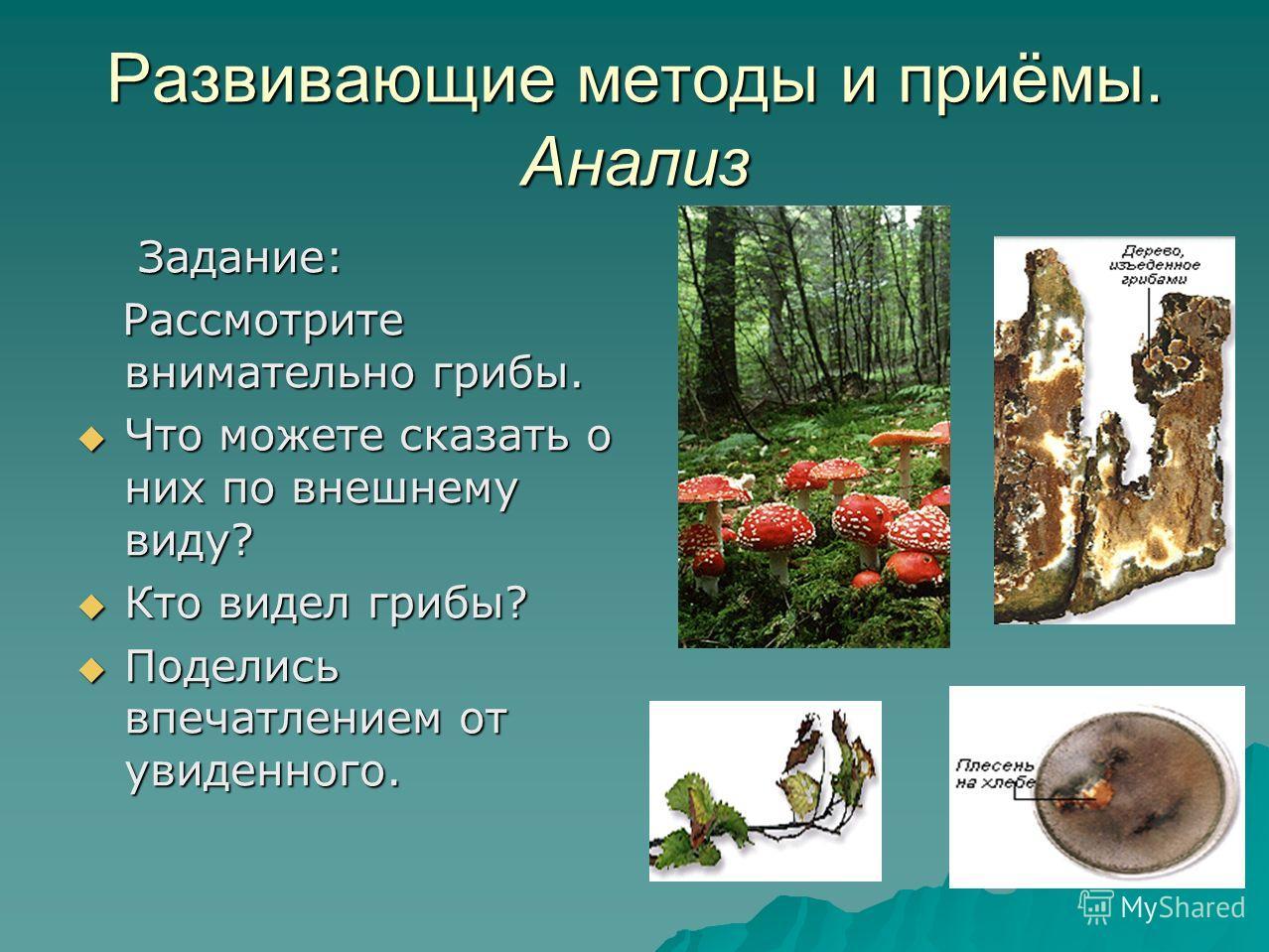 Развивающие методы и приёмы. Анализ Задание: Задание: Рассмотрите внимательно грибы. Рассмотрите внимательно грибы. Что можете сказать о них по внешнему виду? Что можете сказать о них по внешнему виду? Кто видел грибы? Кто видел грибы? Поделись впеча