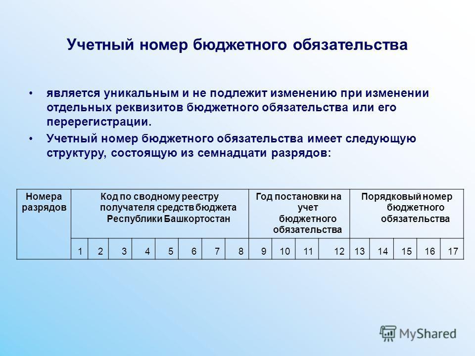 Учетный номер бюджетного обязательства является уникальным и не подлежит изменению при изменении отдельных реквизитов бюджетного обязательства или его перерегистрации. Учетный номер бюджетного обязательства имеет следующую структуру, состоящую из сем