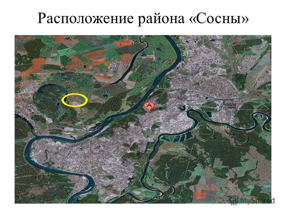 Расположение района «Сосны»
