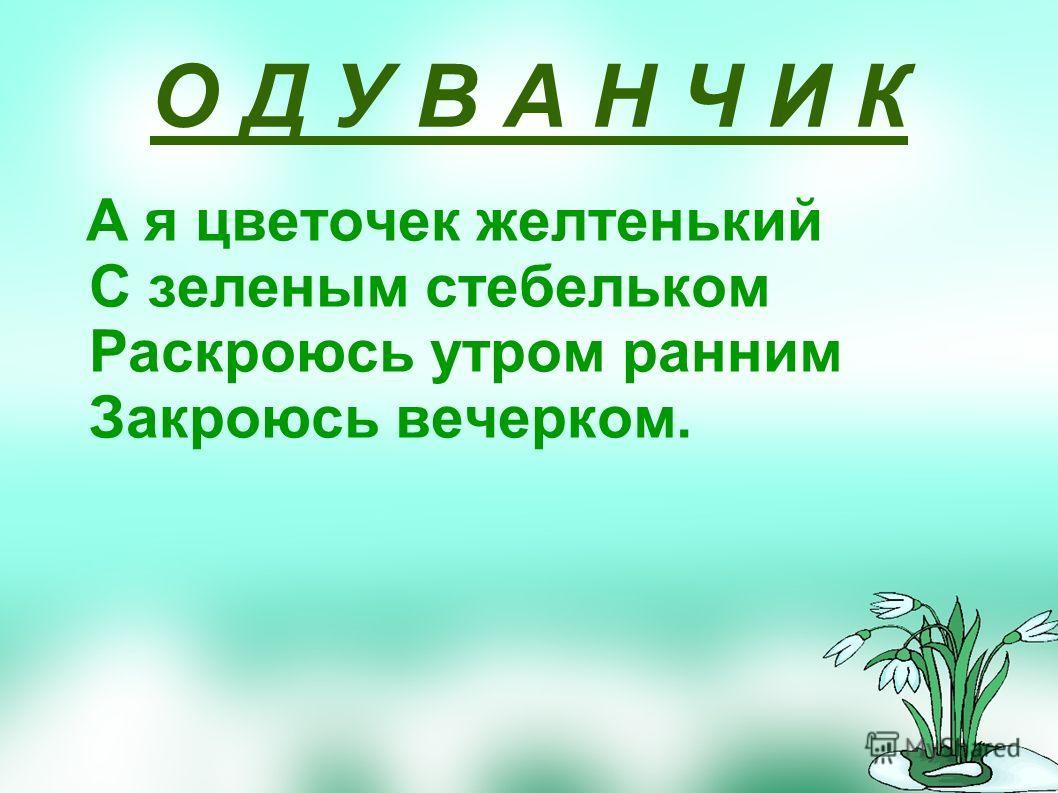 О Д У В А Н Ч И К