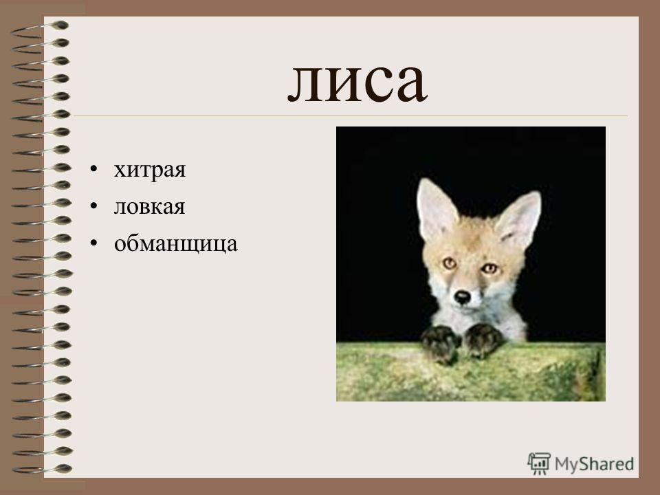 медведь самый сильный тотем русских власть
