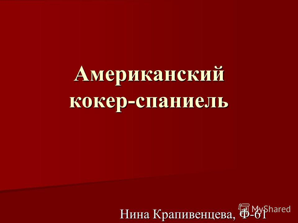 Американский кокер-спаниель Нина Крапивенцева, Ф-61