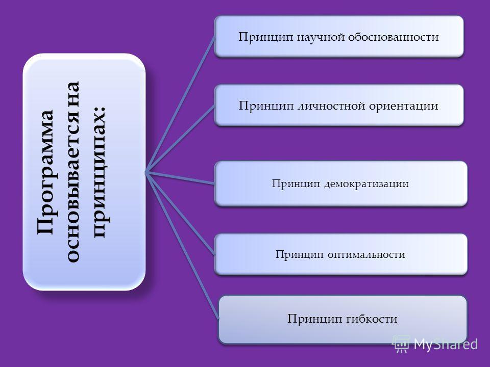 Программа основывается на принципах: Принцип личностной ориентации Принцип демократизации Принцип оптимальности Принцип научной обоснованности Принцип гибкости