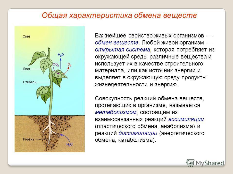 Важнейшее свойство живых организмов обмен веществ. Любой живой организм открытая система, которая потребляет из окружающей среды различные вещества и использует их в качестве строительного материала, или как источник энергии и выделяет в окружающую с