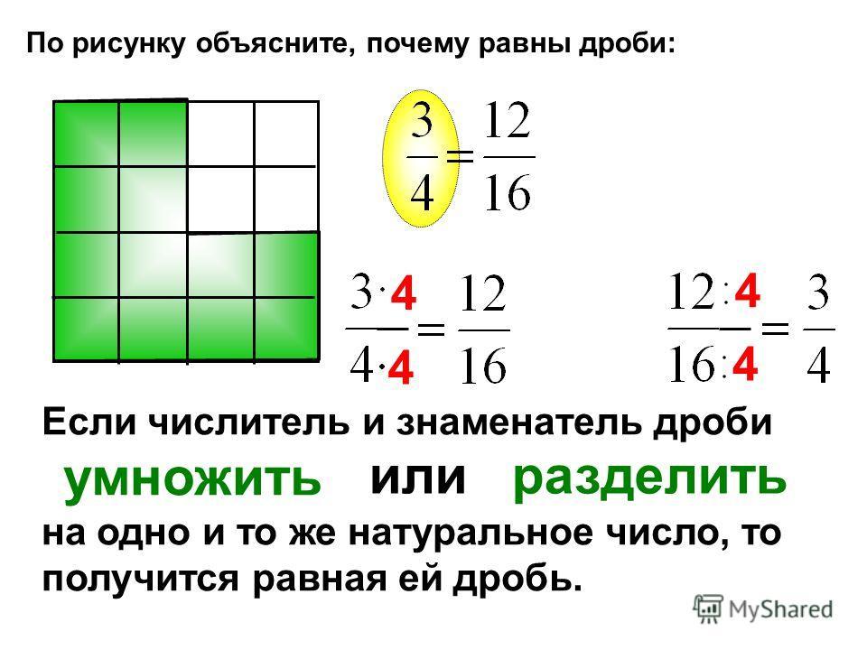 По рисунку объясните, почему равны дроби: Если числитель и знаменатель дроби умножить на одно и то же натуральное число, то получится равная ей дробь. или разделить 4 4 4 4