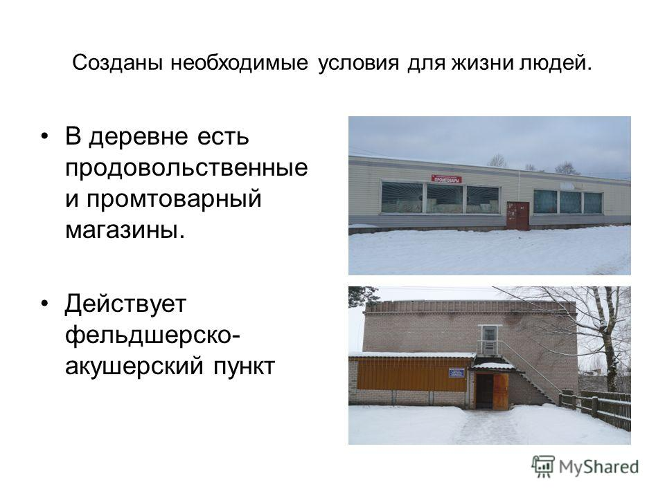 Созданы необходимые условия для жизни людей. В деревне есть продовольственные и промтоварный магазины. Действует фельдшерско- акушерский пункт
