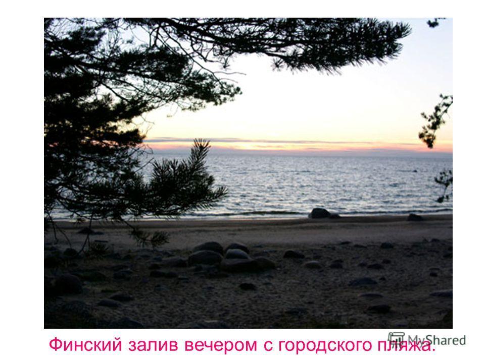 Финский залив вечером с городского пляжа.