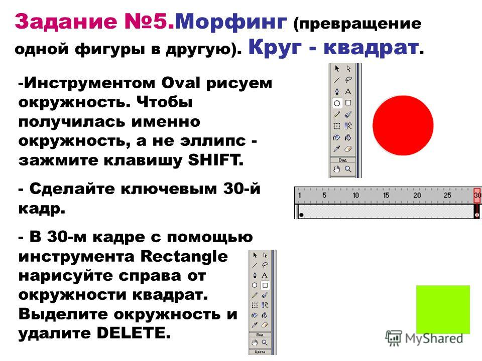 Задание 5.Морфинг (превращение одной фигуры в другую). Круг - квадрат. -Инструментом Oval рисуем окружность. Чтобы получилась именно окружность, а не эллипс - зажмите клавишу SHIFT. - Сделайте ключевым 30-й кадр. - В 30-м кадре с помощью инструмента