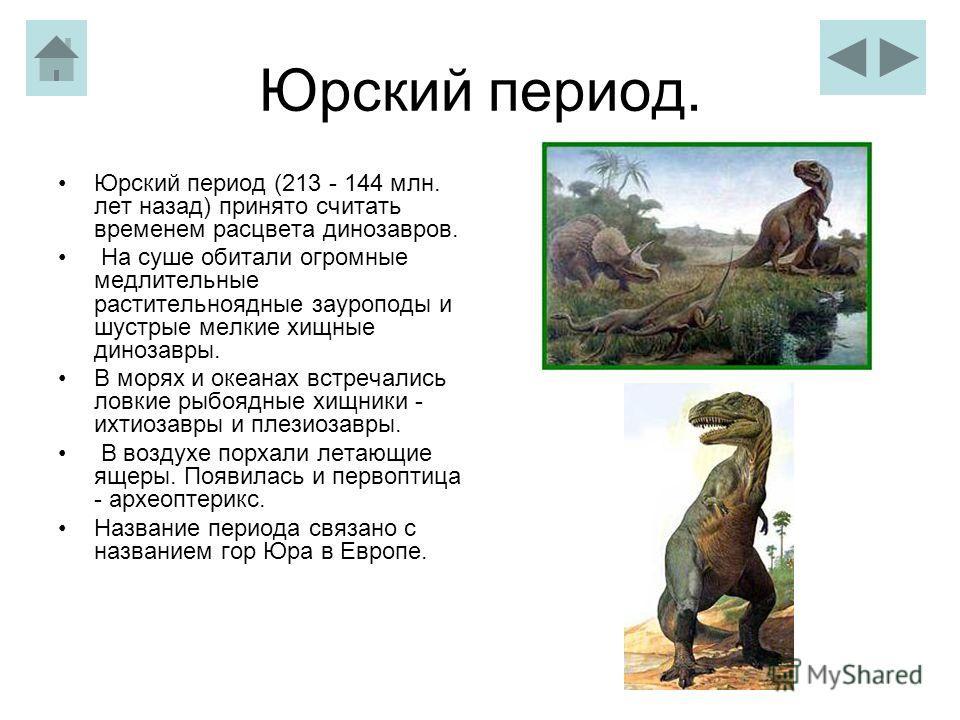 Юрский период. Юрский период (213 - 144 млн. лет назад) принято считать временем расцвета динозавров. На суше обитали огромные медлительные растительноядные зауроподы и шустрые мелкие хищные динозавры. В морях и океанах встречались ловкие рыбоядные х