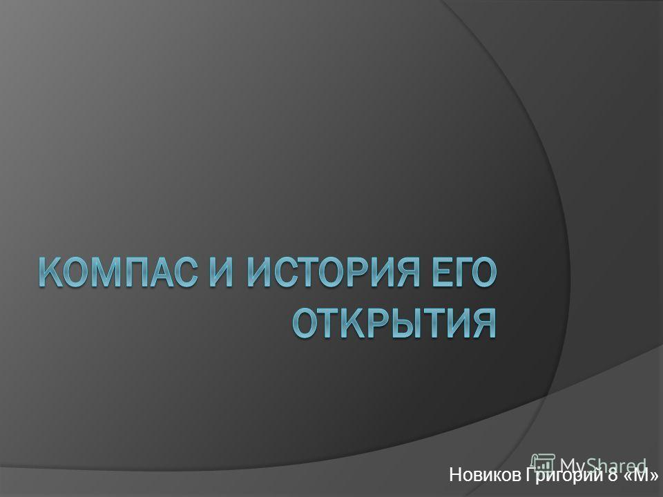 Новиков Григорий 8 «М»