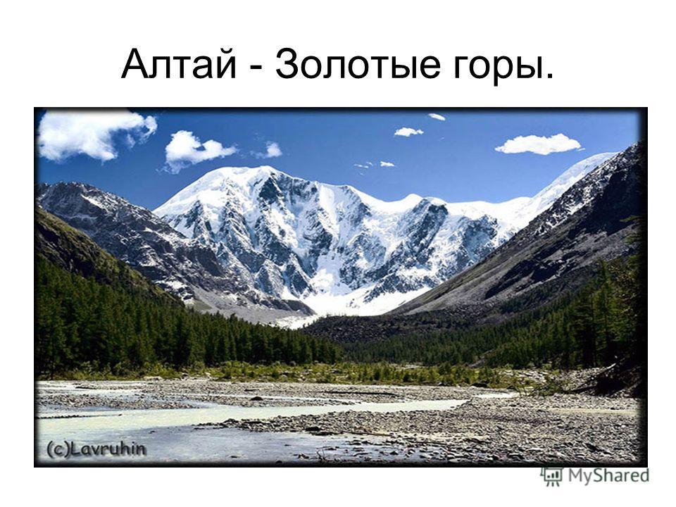 Алтай - Золотые горы.