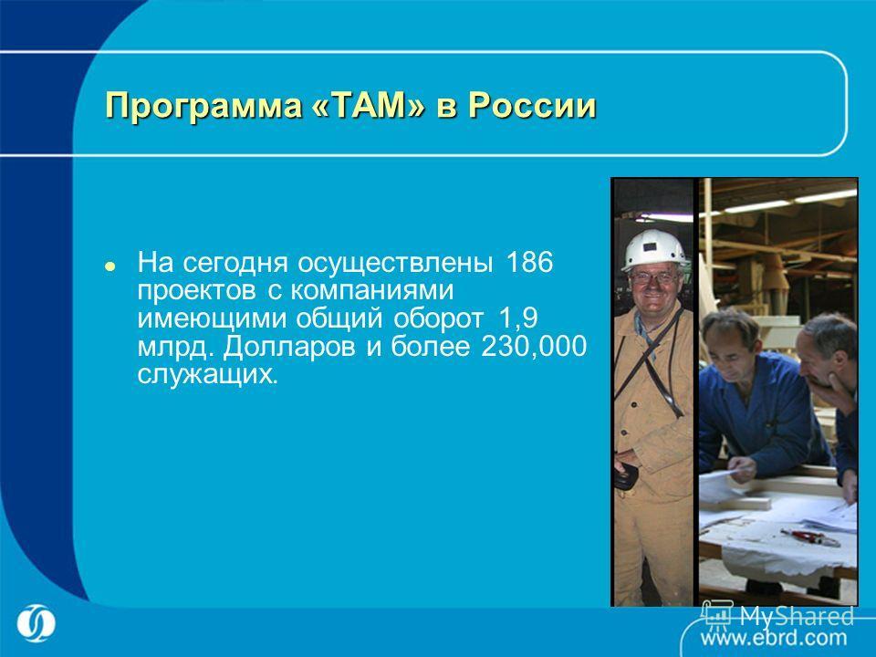 Программа «TAM» в России На сегодня осуществлены 186 проектов с компаниями имеющими общий оборот 1,9 млрд. Долларов и более 230,000 служащих.
