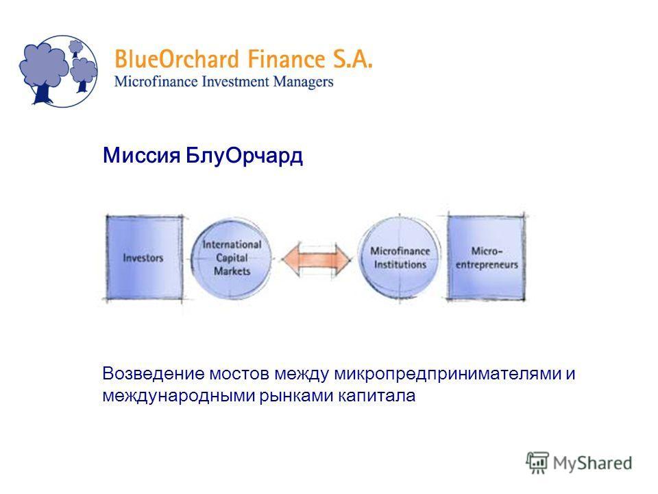 Миссия БлуОрчард Возведение мостов между микропредпринимателями и международными рынками капитала