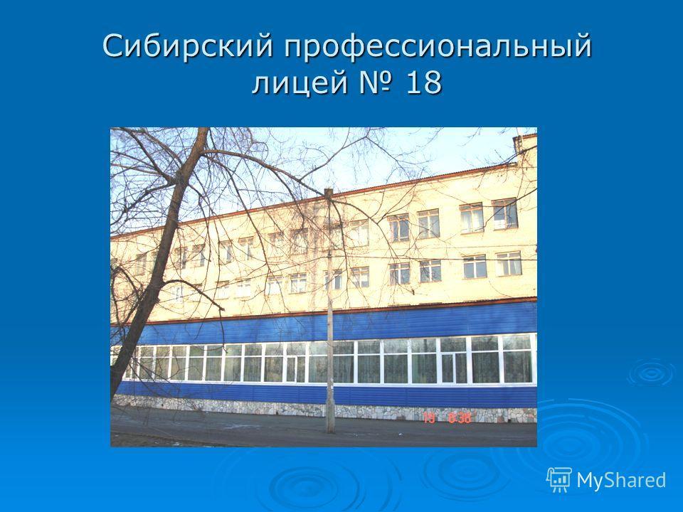 Сибирский профессиональный лицей 18