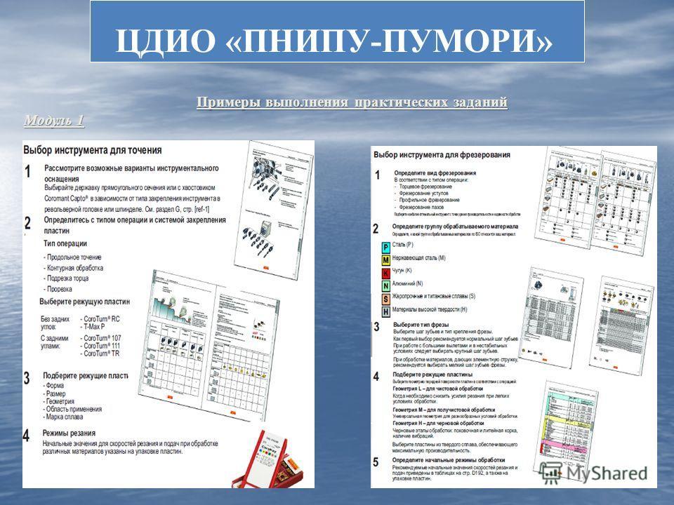 ЦДИО «ПНИПУ-ПУМОРИ» Примеры выполнения практических заданий Примеры выполнения практических заданий Модуль 1