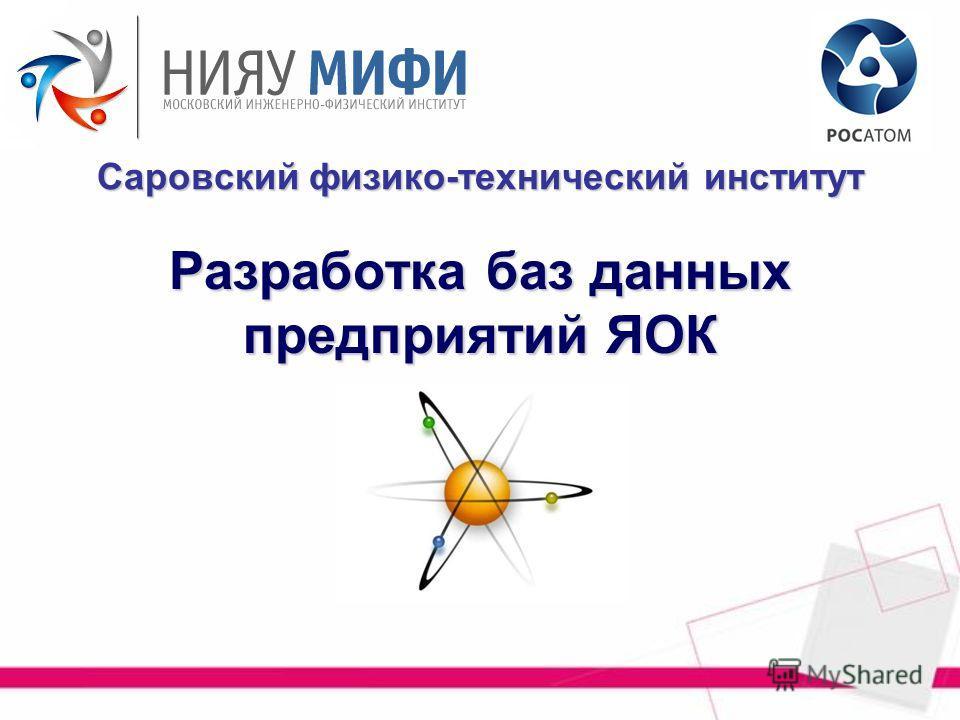 Разработка баз данных предприятий ЯОК Саровский физико-технический институт