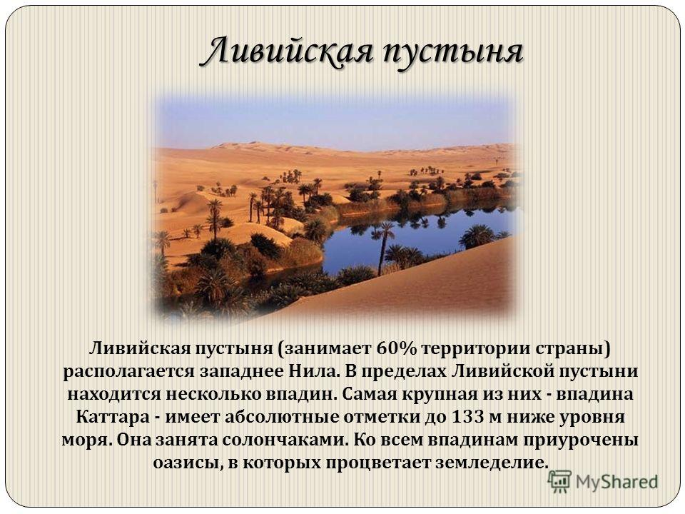 Ливийская пустыня Ливийская пустыня (занимает 60% территории страны) располагается западнее Нила. В пределах Ливийской пустыни находится несколько впадин. Самая крупная из них - впадина Каттара - имеет абсолютные отметки до 133 м ниже уровня моря. Он
