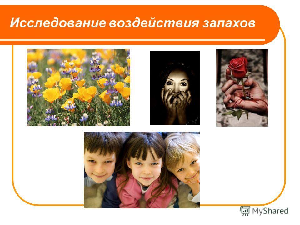 Исследование воздействия запахов