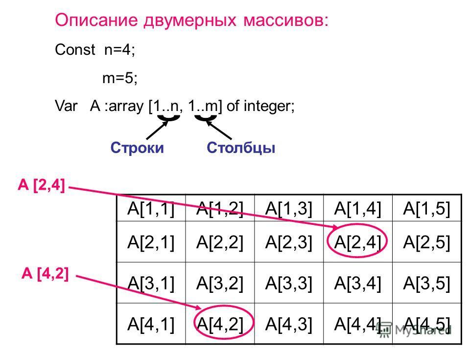Описание двумерных массивов: Const n=4; m=5; Var A :array [1..n, 1..m] of integer; СтрокиСтолбцы A [2,4] A[1,1]A[1,2]A[1,3]A[1,4]A[1,5] A[2,1]A[2,2]A[2,3]A[2,4]A[2,5] A[3,1]A[3,2]A[3,3]A[3,4]A[3,5] A[4,1]A[4,2]A[4,3]A[4,4]A[4,5] A [4,2]