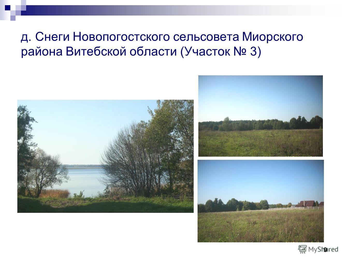 9 д. Снеги Новопогостского сельсовета Миорского района Витебской области (Участок 3)