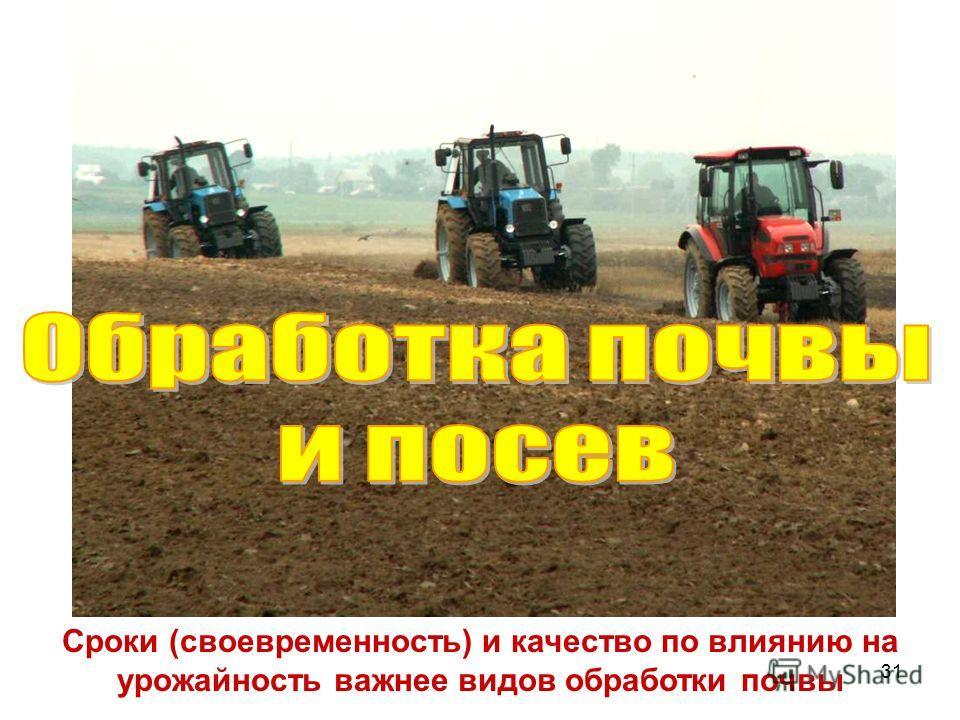 31 Сроки (своевременность) и качество по влиянию на урожайность важнее видов обработки почвы